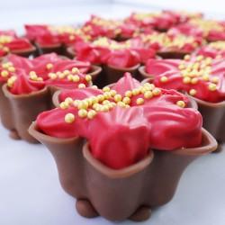 Flores de Natal Vermelha...