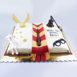 A história de Harry Potter...