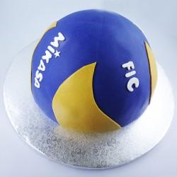 Bola de Voleibol - Mikasa (Kg)